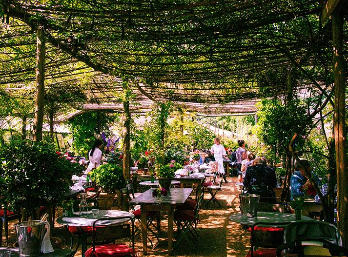 unsual-garden-Petersham-Nurseries